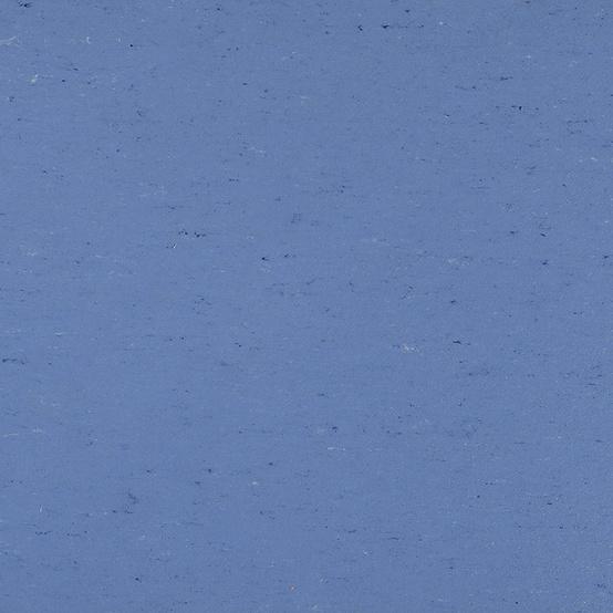 1004 Bluebird