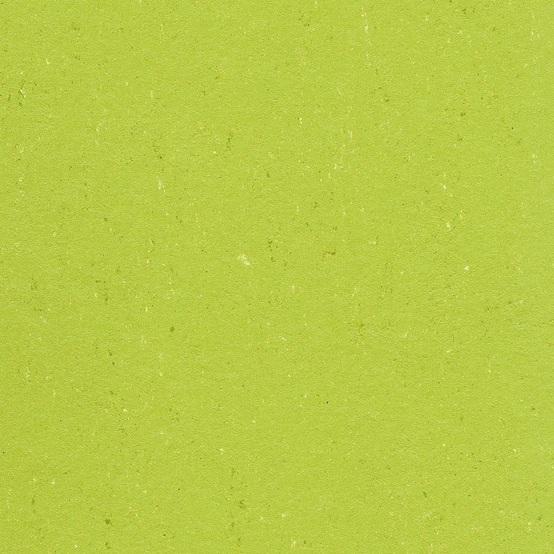 1132 Lime Green Colorette