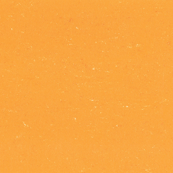 1171 Sunrise Orange