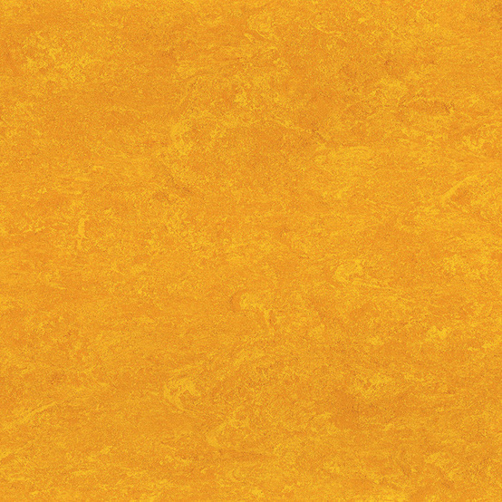 1172 Papaya Orange